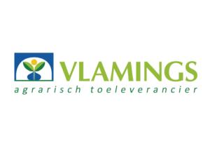 Vlamings